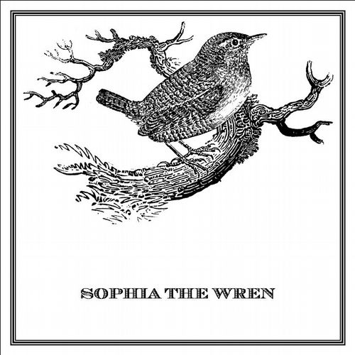 Zoomorphic' Greeting Card Sophia The Wren